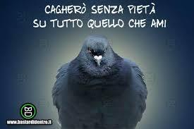 CACGERO' SENZA PIETA....